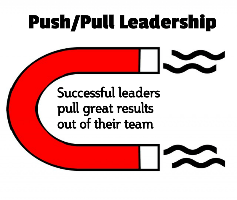 Push Pull Leadership