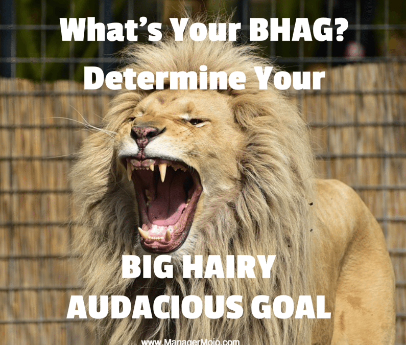 What is a BHAG and Why Do You Need One?